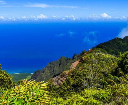 View of the ocean from mountains on the Hawaii Expedition
