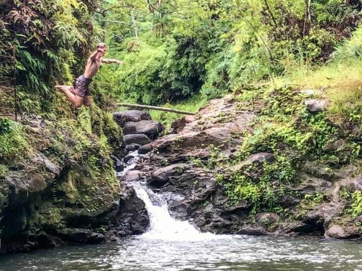 Explorers on the Hawaii Expedition jumping into a river