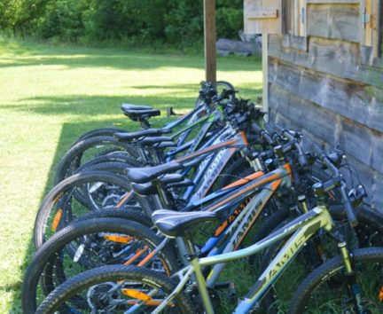 Mountain bikes lined up for Adult Camp